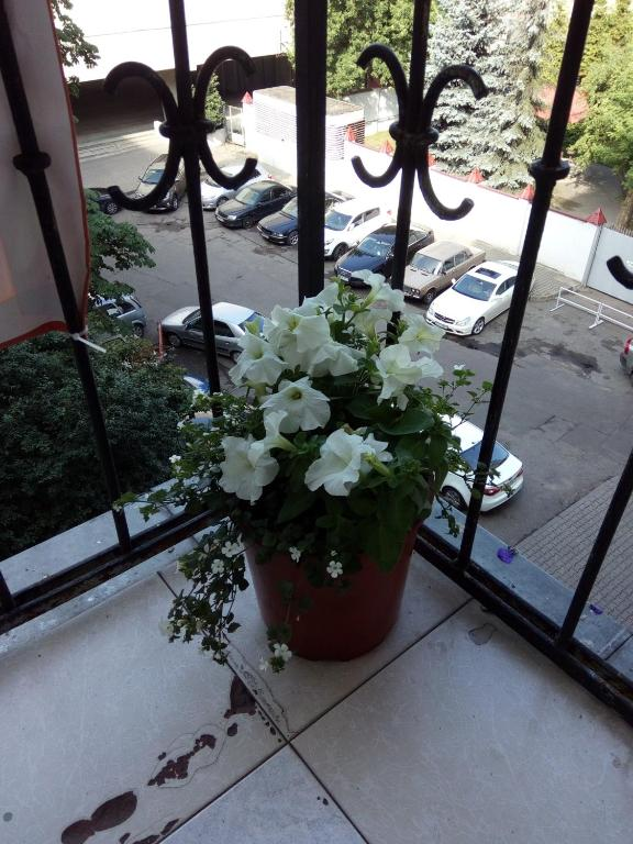 Отель Независимости 23 - фото №26