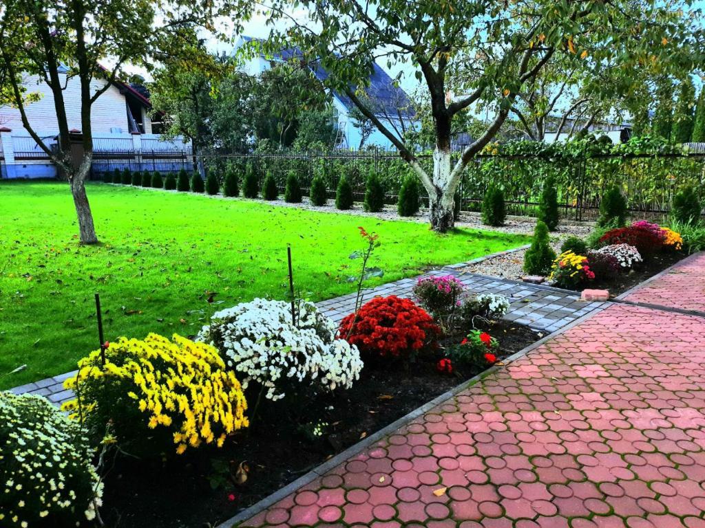 Отель The garden - фото №42