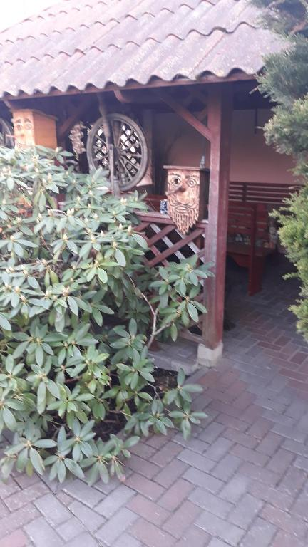 Отель With sauna - фото №12