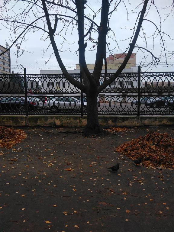 Отель Бульвар Шевченко - фото №10