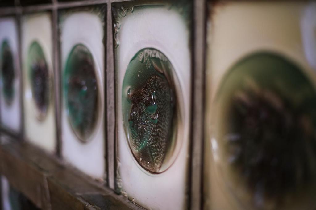 Отель Прибрежный - фото №8
