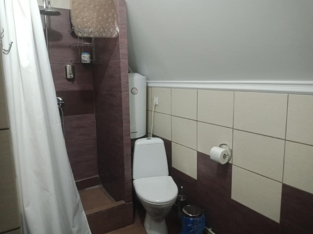 Отель Домашний Очаг - фото №54