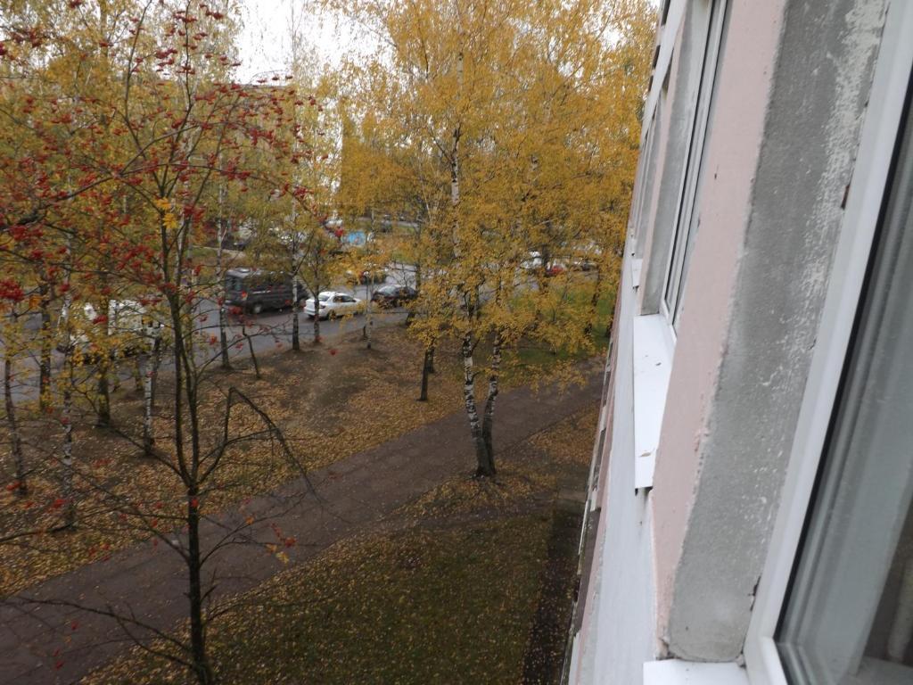 Отель Сигнал ДОСААФ - фото №49