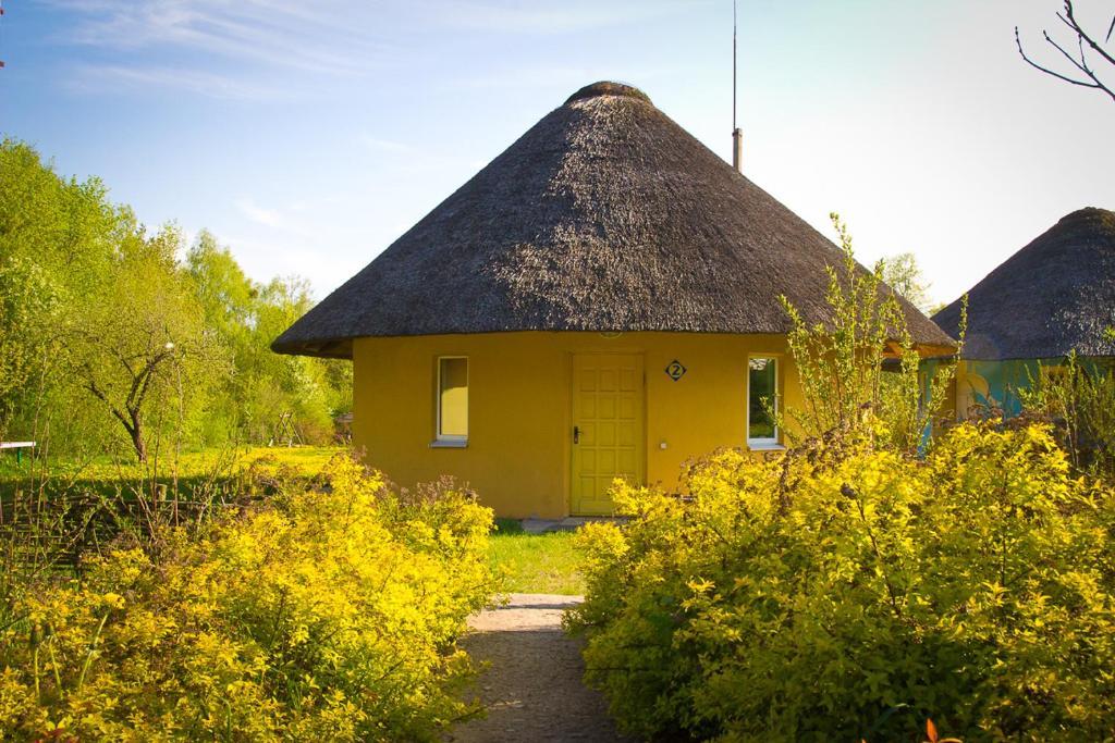 Отель Пригодичи - фото №3