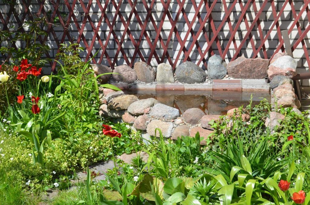 Отель With sauna and pool - фото №43