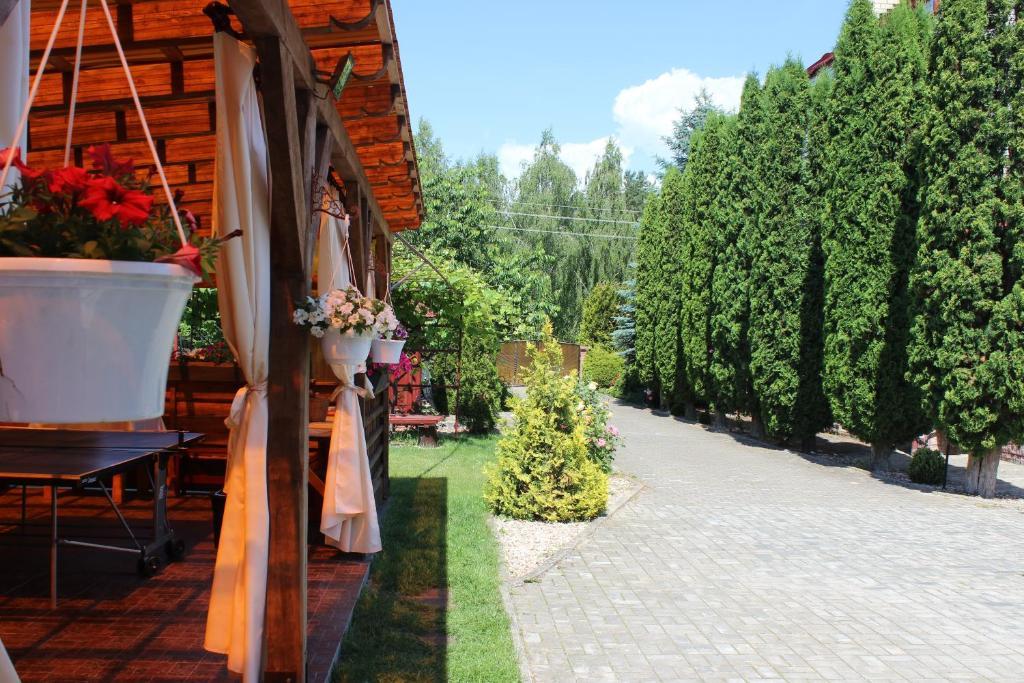 Отель В Соснах - фото №9