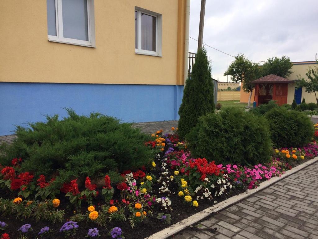 Отель Драйв - фото №53
