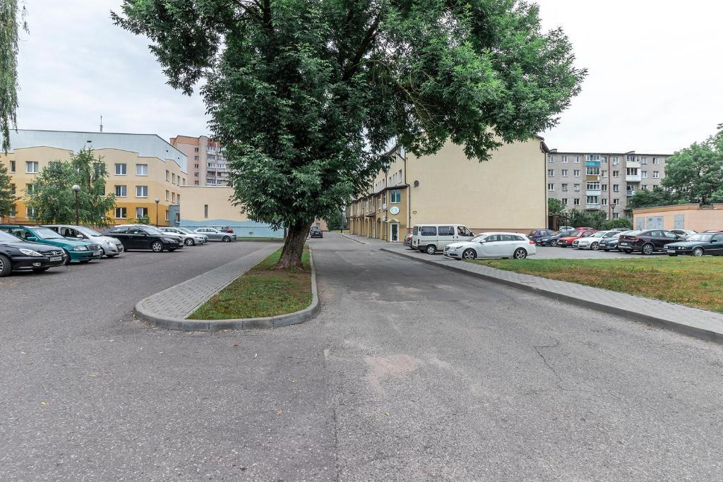 Отель Vinograd Hotel - фото №9